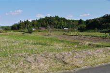 田舎風景.jpg